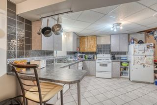 Photo 47: 55 Marquis Meadows Place SE: Calgary Detached for sale : MLS®# A1080636
