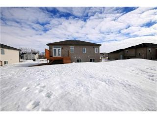 Photo 20: 46 Sheila Drive in New Bothwell: R16 Residential for sale : MLS®# 1703710