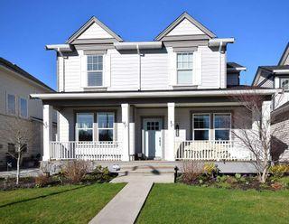 Photo 1: 17269 3A AVENUE in Surrey: Pacific Douglas Home for sale ()  : MLS®# R2034646
