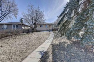 Photo 35: 126 Dovercliffe Way SE in Calgary: Dover Detached for sale : MLS®# A1082276