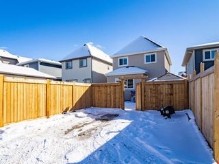 Photo 33: 115 Marquis Court SE in Calgary: Mahogany Detached for sale : MLS®# A1071634