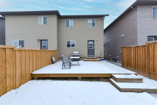 Photo 25: 246 Skyview Ranch Boulevard NE in Calgary: Skyview Ranch Semi Detached for sale : MLS®# A1052771