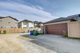 Photo 28: 3 Skyview Springs Crescent NE in Calgary: Skyview Ranch Detached for sale : MLS®# A1153447