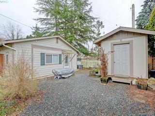 Photo 18: 947 Dunn Ave in VICTORIA: SE Quadra Full Duplex for sale (Saanich East)  : MLS®# 781222