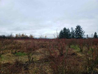 Photo 14: Blueberry Farm FORD RD, Pitt Meadows in Pitt Meadows: West Meadows House for sale : MLS®# R2519795