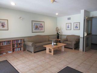 Photo 21: 203 4703 43 Avenue: Stony Plain Condo for sale : MLS®# E4256465