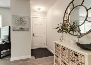 Photo 2: 5812 21 Street SW in Calgary: North Glenmore Park Detached for sale : MLS®# A1128102