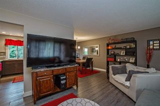 Photo 3: 33318 ROSE Avenue in Mission: Mission BC House for sale : MLS®# R2106190