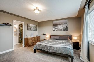 Photo 26: 234 Canoe Square SW: Airdrie Detached for sale : MLS®# A1043547