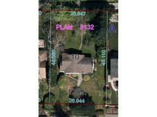 Photo 6: 1259 GORDON AV in West Vancouver: Ambleside House for sale : MLS®# V993487
