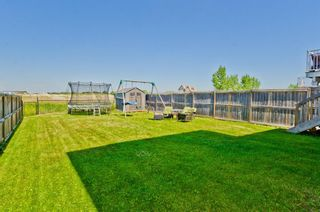Photo 32: 656 LUXSTONE Landing SW: Airdrie Detached for sale : MLS®# A1018959