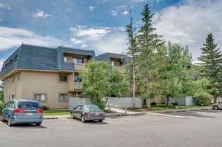 Photo 2: 2310 3115 51 Street SW in Calgary: Glenbrook Apartment for sale : MLS®# A1014586