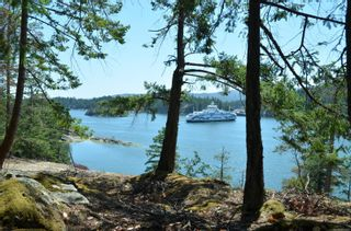Photo 29: 1095 Nose Point Rd in : GI Salt Spring Land for sale (Gulf Islands)  : MLS®# 881923