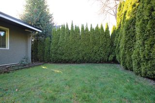 Photo 16: : Vancouver House for rent : MLS®# AR065