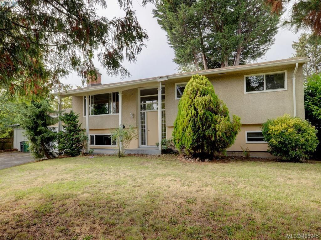 Main Photo: 4034 Hodgson Pl in VICTORIA: SE Lake Hill House for sale (Saanich East)  : MLS®# 806727