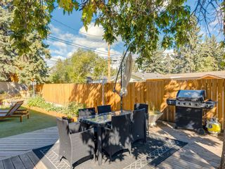 Photo 46: 1414 SPRINGFIELD Place SW in Calgary: Southwood Detached for sale : MLS®# A1060916