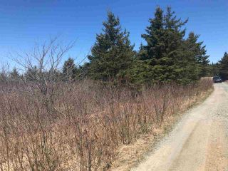 Photo 8: 11574 Highway 7 in Lake Charlotte: 35-Halifax County East Vacant Land for sale (Halifax-Dartmouth)  : MLS®# 201927372