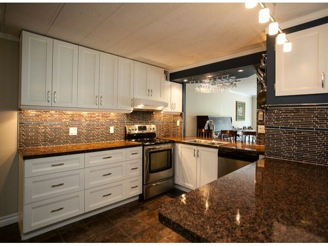 """Main Photo: 213 3665 244TH Street in Langley: Otter District Manufactured Home for sale in """"Langley Grove Estates"""" : MLS®# F1407635"""