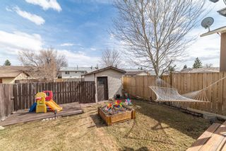 Photo 30: 49 Templeson Crescent NE in Calgary: Temple Detached for sale : MLS®# A1089563