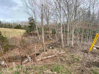 Photo 20: 94 J W McCulloch Road in Blue Mountain: 108-Rural Pictou County Residential for sale (Northern Region)  : MLS®# 202111303