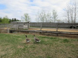 Photo 40: 63202 RR 194: Rural Thorhild County House for sale : MLS®# E4246203
