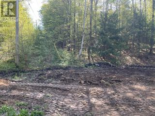 Photo 21: 1372 LAKE LORRAINE Road in Tory Hill: Vacant Land for sale : MLS®# 40052884