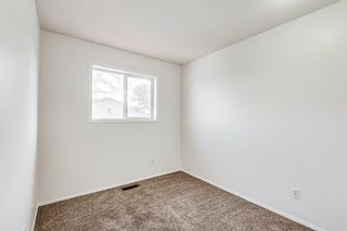 Photo 23: 18 Erin Meadow Close SE in Calgary: Erin Woods Detached for sale : MLS®# A1143099
