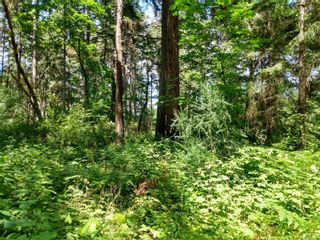 Photo 8: 20 Pirate Pl in : Isl Protection Island Land for sale (Islands)  : MLS®# 878593