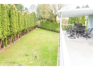 Photo 11: 11902 BRUCE PL in Maple Ridge: Southwest Maple Ridge House for sale : MLS®# V1053010