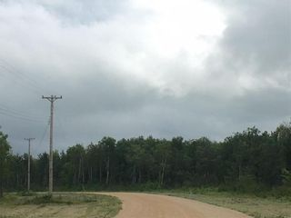 Photo 4: 1 North Winds Road in Alonsa: Lake Manitoba Narrows Residential for sale (R19)  : MLS®# 1912161