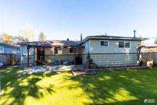 Photo 20: 11677 STEEVES Street in Maple Ridge: Southwest Maple Ridge House for sale : MLS®# R2569720