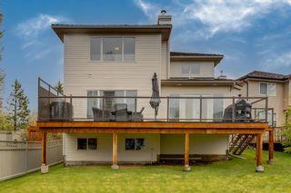 Photo 42: 13705 Mt Mckenzie Drive SE in Calgary: McKenzie Lake Detached for sale : MLS®# A1112785