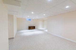 Photo 9: 11428 37B Avenue in Edmonton: Zone 16 House for sale : MLS®# E4262550