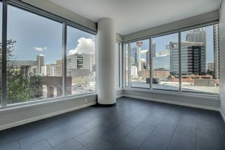 Photo 9: 303 211 13 Avenue SE in Calgary: Beltline Apartment for sale : MLS®# A1108216