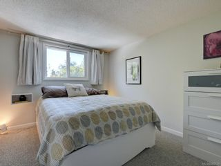 Photo 13: 5 954 Queens Ave in : Vi Central Park Row/Townhouse for sale (Victoria)  : MLS®# 845721