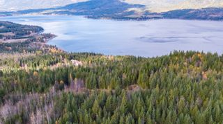 Photo 12: S/W 1/4 IVY ROAD in KAMLOOPS: Eagle Bay Land Only for sale (Shuswap Lake)  : MLS®# 156633