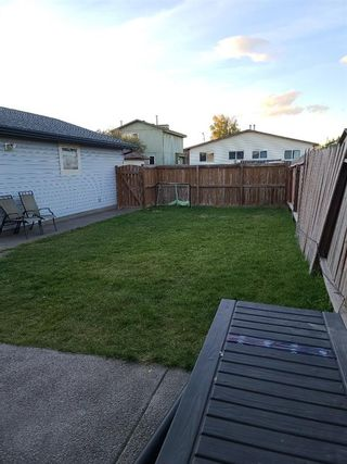 Photo 33: 179 Whitman Place NE in Calgary: Whitehorn Detached for sale : MLS®# A1144617