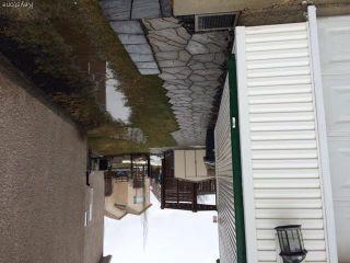 Photo 18: 23 Sherbo Cove in Winnipeg: Transcona Residential for sale (North East Winnipeg)  : MLS®# 1603442