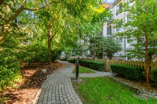 """Photo 19: 305 1150 E 29TH Street in North Vancouver: Lynn Valley Condo for sale in """"Highgate"""" : MLS®# R2497351"""