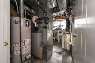 Photo 34: 13834 RAVINE Drive in Edmonton: Zone 11 House for sale : MLS®# E4264760