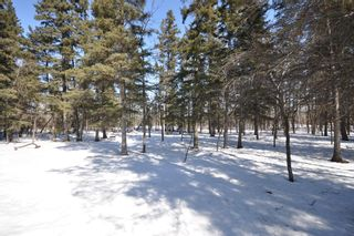 Photo 6: 70059 Roscoe Road in Dugald: Birdshill Area Residential for sale ()  : MLS®# 1105110