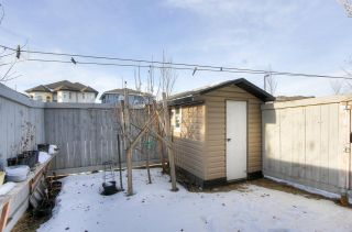 Photo 43: 21 1820 34 Avenue in Edmonton: Zone 30 Townhouse for sale : MLS®# E4225301