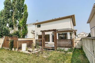 Photo 49: 766 Coral Springs Boulevard NE in Calgary: Coral Springs Detached for sale : MLS®# A1136272