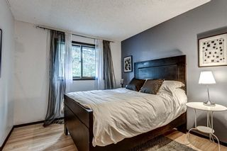 Photo 22: 88 Berkley Rise NW in Calgary: Beddington Heights Detached for sale : MLS®# A1127287