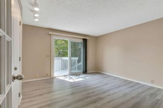 Photo 18: 20 Berkshire Close NW in Calgary: Beddington Heights Detached for sale : MLS®# A1133317