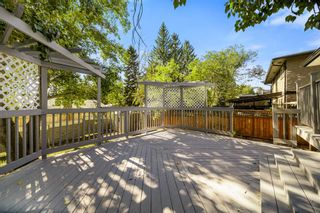 Photo 9: 5403 Dalhart Road NW in Calgary: Dalhousie Detached for sale : MLS®# A1144585