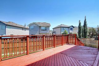 Photo 46: 234 West Ranch Place SW in Calgary: West Springs Detached for sale : MLS®# A1125924
