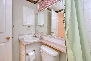 Photo 43: 152 CITADEL Manor NW in Calgary: Citadel Detached for sale : MLS®# C4294060
