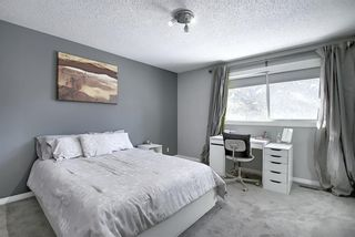Photo 20: 28 Forest Green SE in Calgary: Forest Heights Detached for sale : MLS®# A1065576