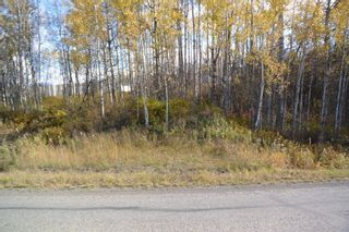"""Photo 7: Lot 5 OLD BABINE LAKE Road in Smithers: Smithers - Rural Land for sale in """"Driftwood"""" (Smithers And Area (Zone 54))  : MLS®# R2625264"""